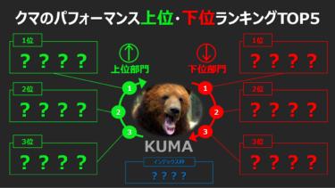 【含み益】クマのパフォーマンス上位・下位ランキング~TOP5~【含み損】